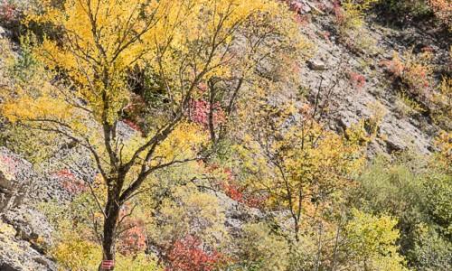Méouge à l'automne